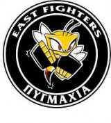 EAST FIGHTERS